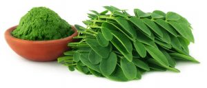 Health benefits of Moringa Leaf (Moringa Oleifera)